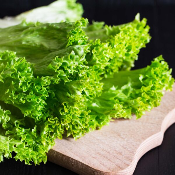 ladovy-salat
